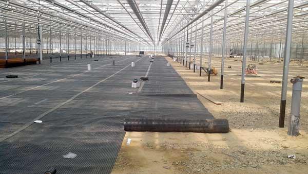 Где применяют профилированную мембрану Planter Standard